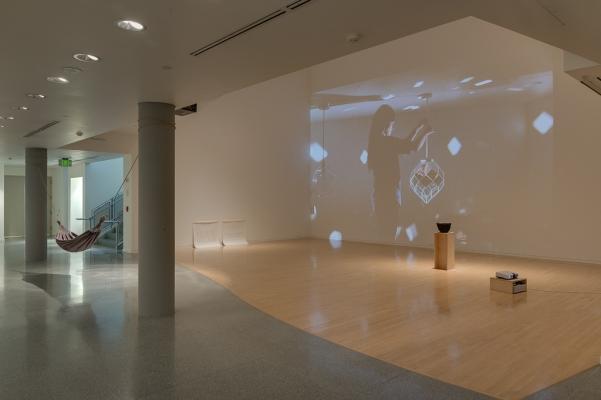 Anne Fenton installation image
